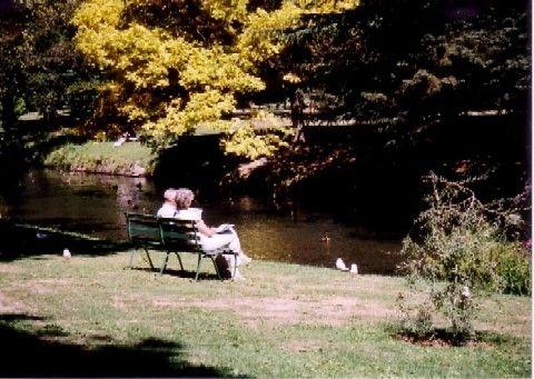 クライストチャーチの植物園