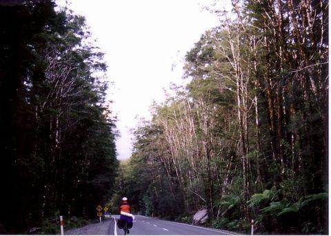 自転車旅行の姿