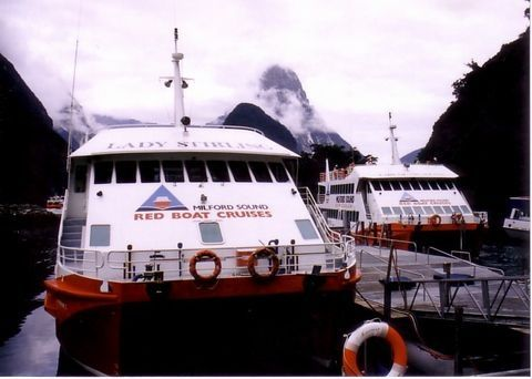ミルフォードサウンドの観光船